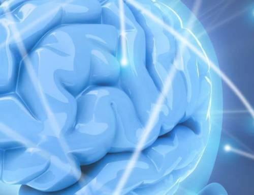 Distorsiones cognitivas y el metamodelo del lenguaje de la Programación Neuro-lingüística